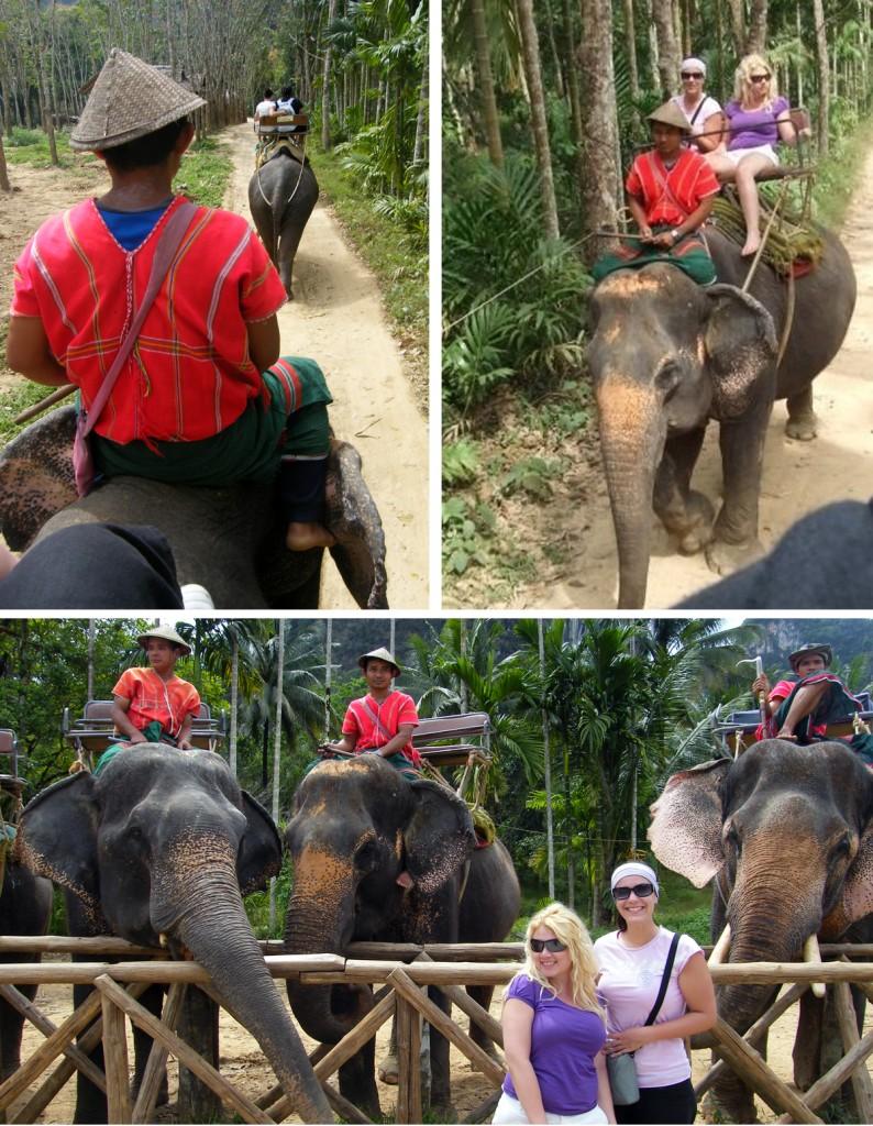 Elephant trekking - Khao Sok National Park, Thailand