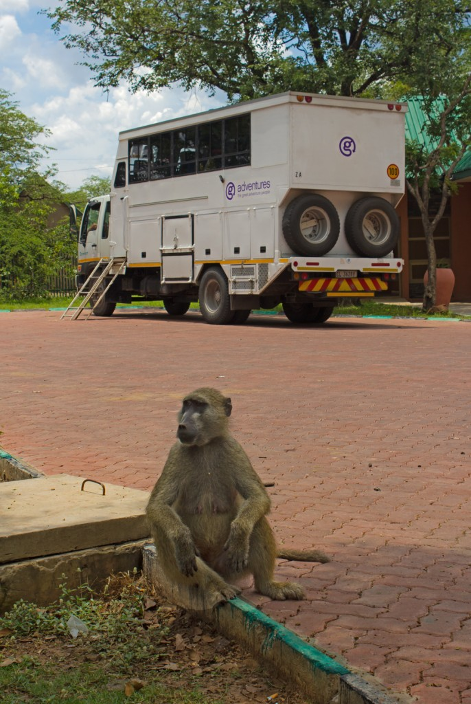 G Adventures Overland Truck at Victoria Falls