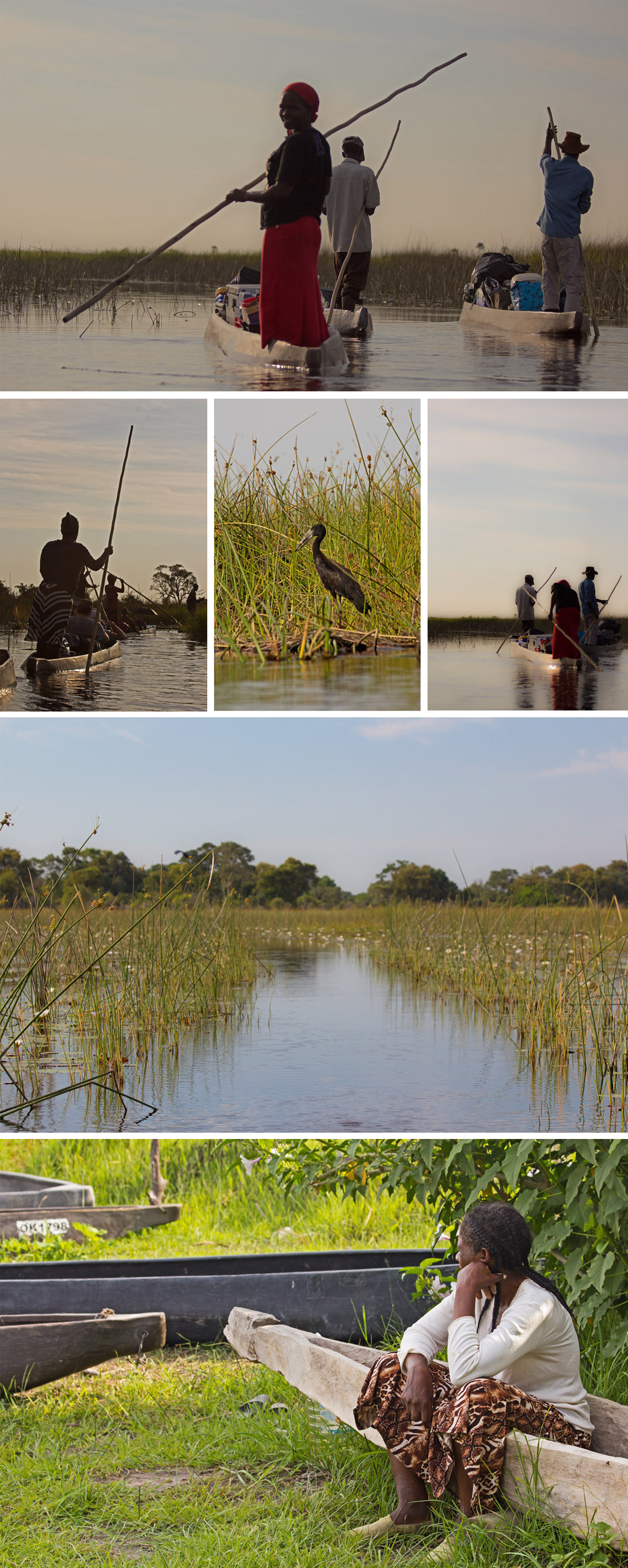 Mokoro ride down the Okavango Delta