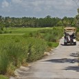 Hammock Bay is one of two of the Marco Island Marriott Resorts golf courses. It's a beautiful golf course that takes advantage of the surrounding natural terrain to provide the golfer with a challenging yet visually stimulating golfing experience.