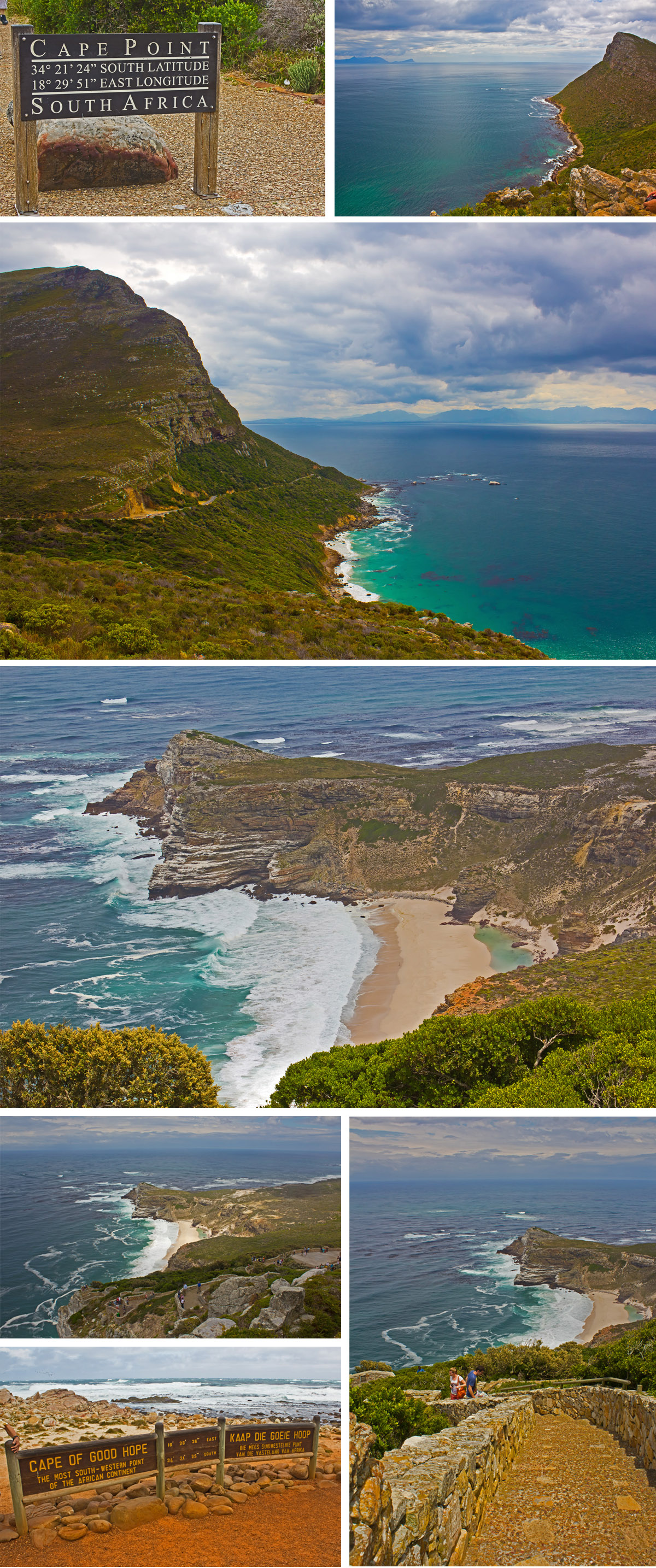 Blue Monkey Tours Review - Cape Point, South Africa
