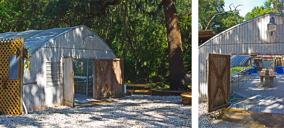 Omni Amelia Island Plantation Resort Review