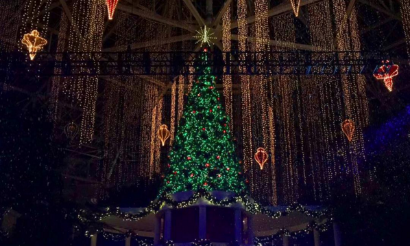 Gaylord Palms Atrium Christmas